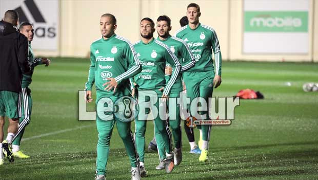 Elim.CAN 2021: Bounedjah