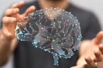 8 bonnes habitudes pour maintenir le cerveau en forme
